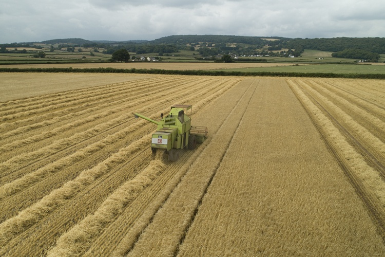 An aerial photograph of a combine harvester at work