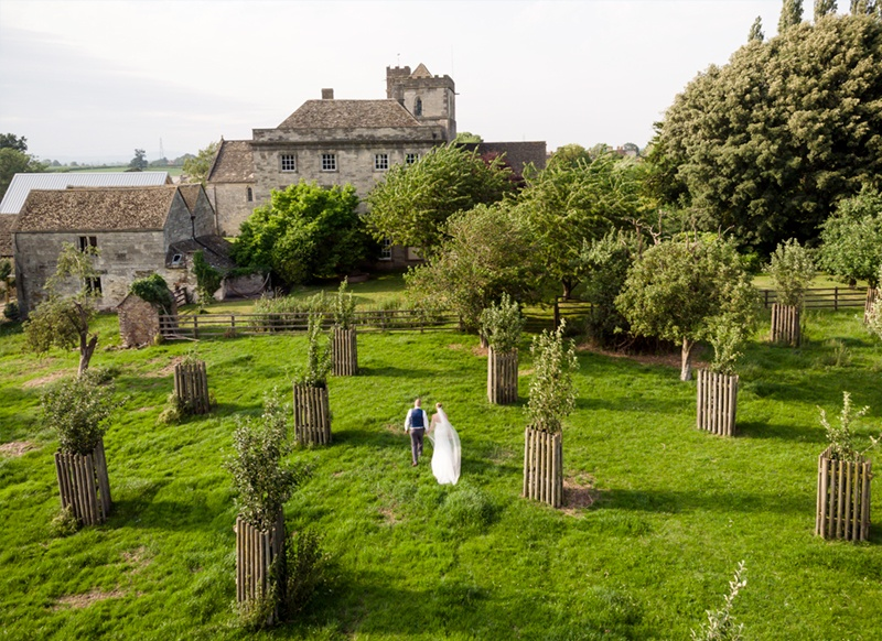 An aerial photograph of a bride and groom in an orchard.