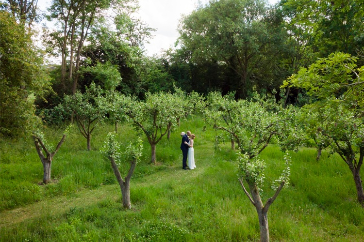 An aerial images of a bride and groom hugging in an orchard.